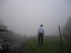 IMGP1032霧のベルビュ-